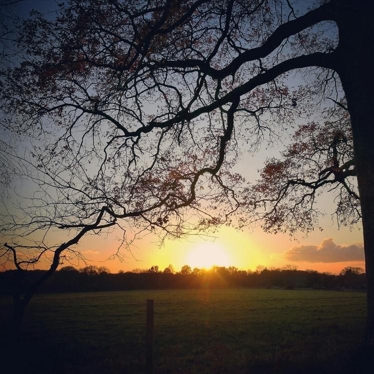 beautiful winter sunsets, frame - estelleclarke | ello