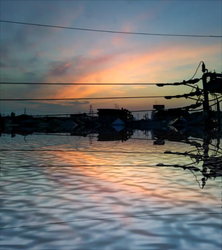 Twilight summer - Home site: CO - asurawill | ello