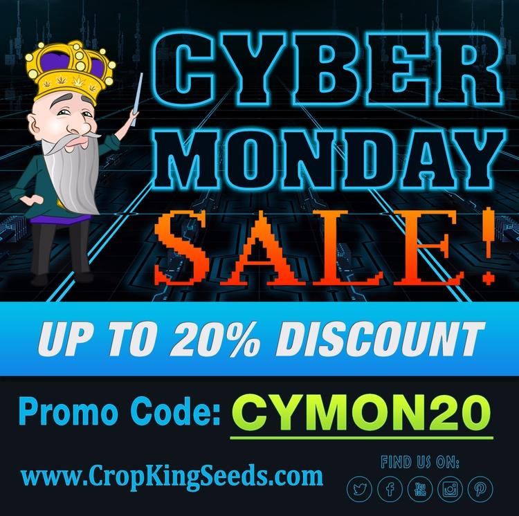 Cyber Monday sale - cropkingseeds - cropkingseeds | ello