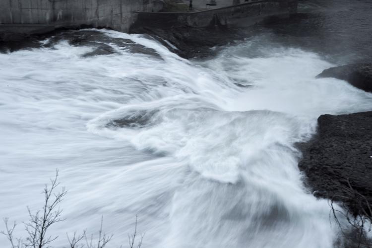 Spokane, Washington, nature, ellophotography - usnrmustang | ello