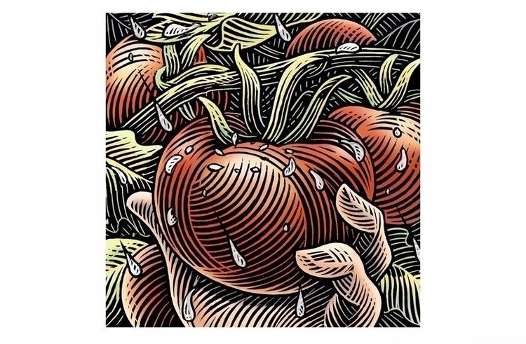 Seed packet design - woodcut, linocut - scott_sawyer   ello