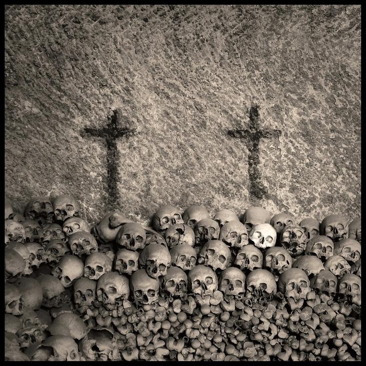Skull (02) Augusto De Luca - AugustoDeLuca - augusto-de-luca | ello