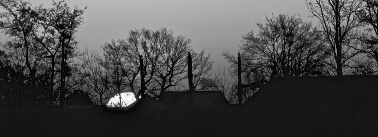 Early Morning  - sonydschx400v, sunrise - heinvanwersch | ello