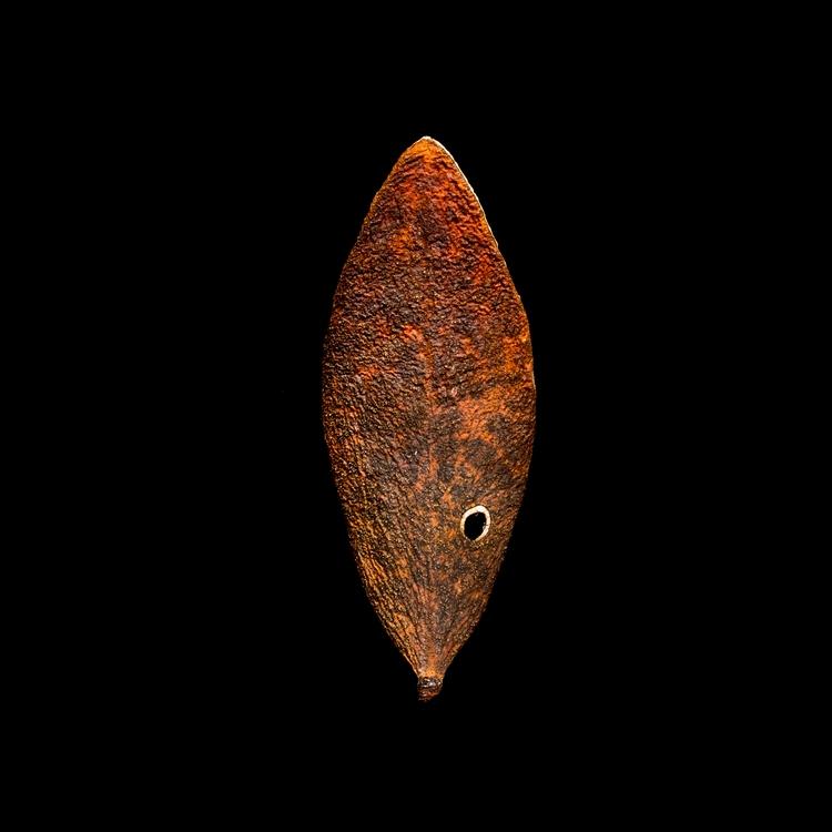 leaf 164 series leafscapes jojo - craigcloutier | ello