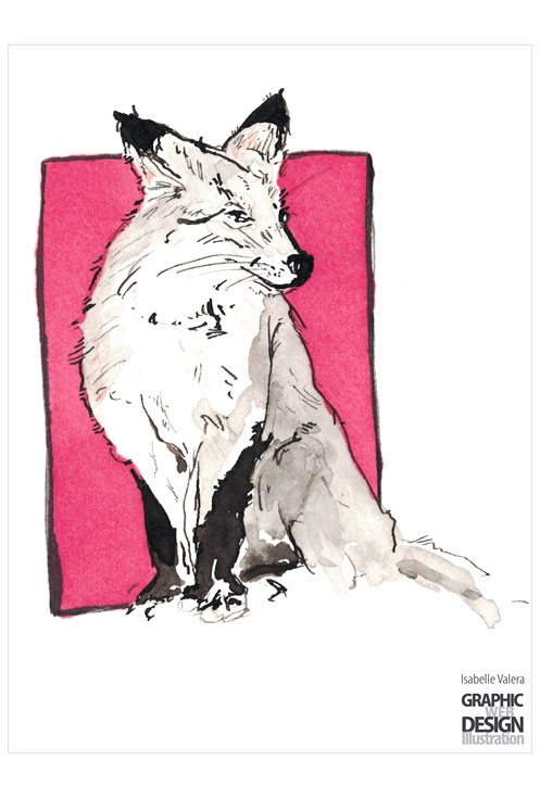 Fox - illustration, ink, pink, fox - ivalera | ello