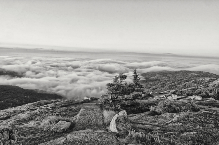 ,#Mainecoast,#Maine,#hiking,#tr - mark57nc | ello