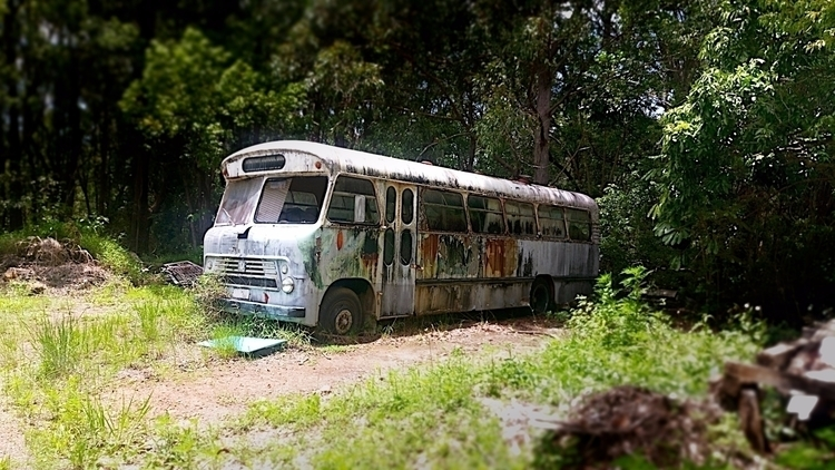live Mullumbimby NSW Australia - psnelling2011 | ello
