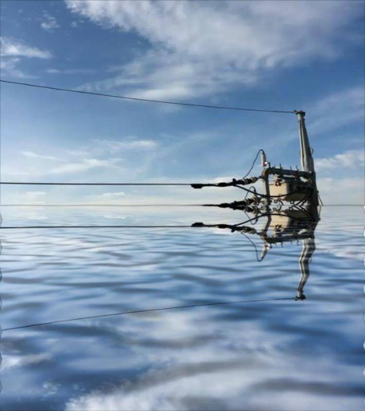 water world Home site: COCOROZA - asurawill | ello