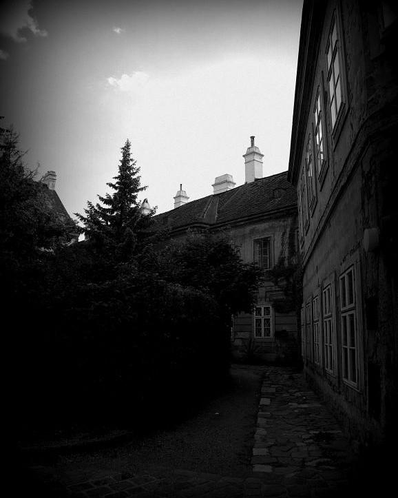 ein Wiener Innenhof mit viel gr - fkopr | ello