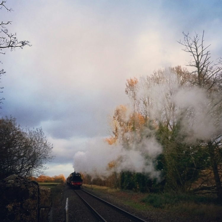 nostalgic sight steam train cut - estelleclarke | ello