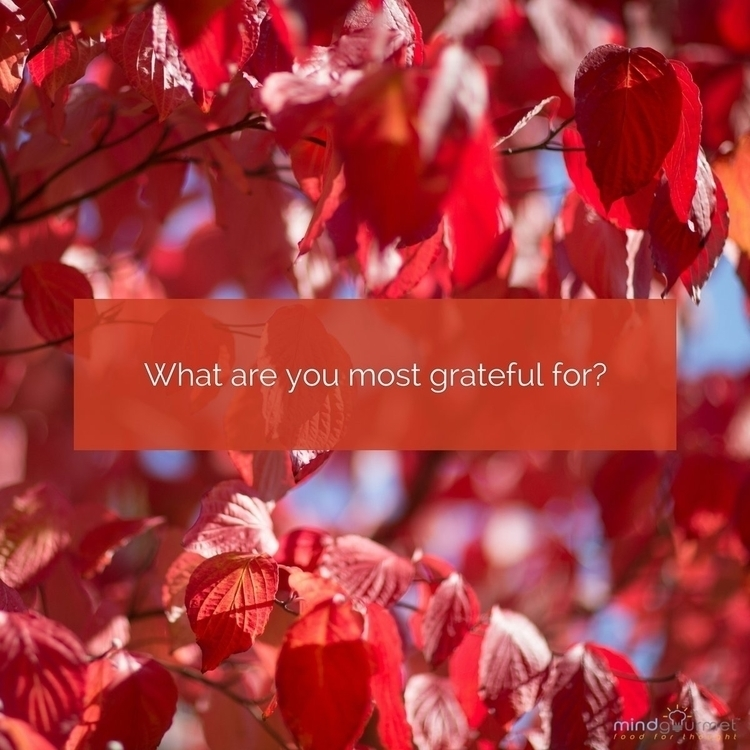 grateful, thankful, grateful - paulgoade | ello