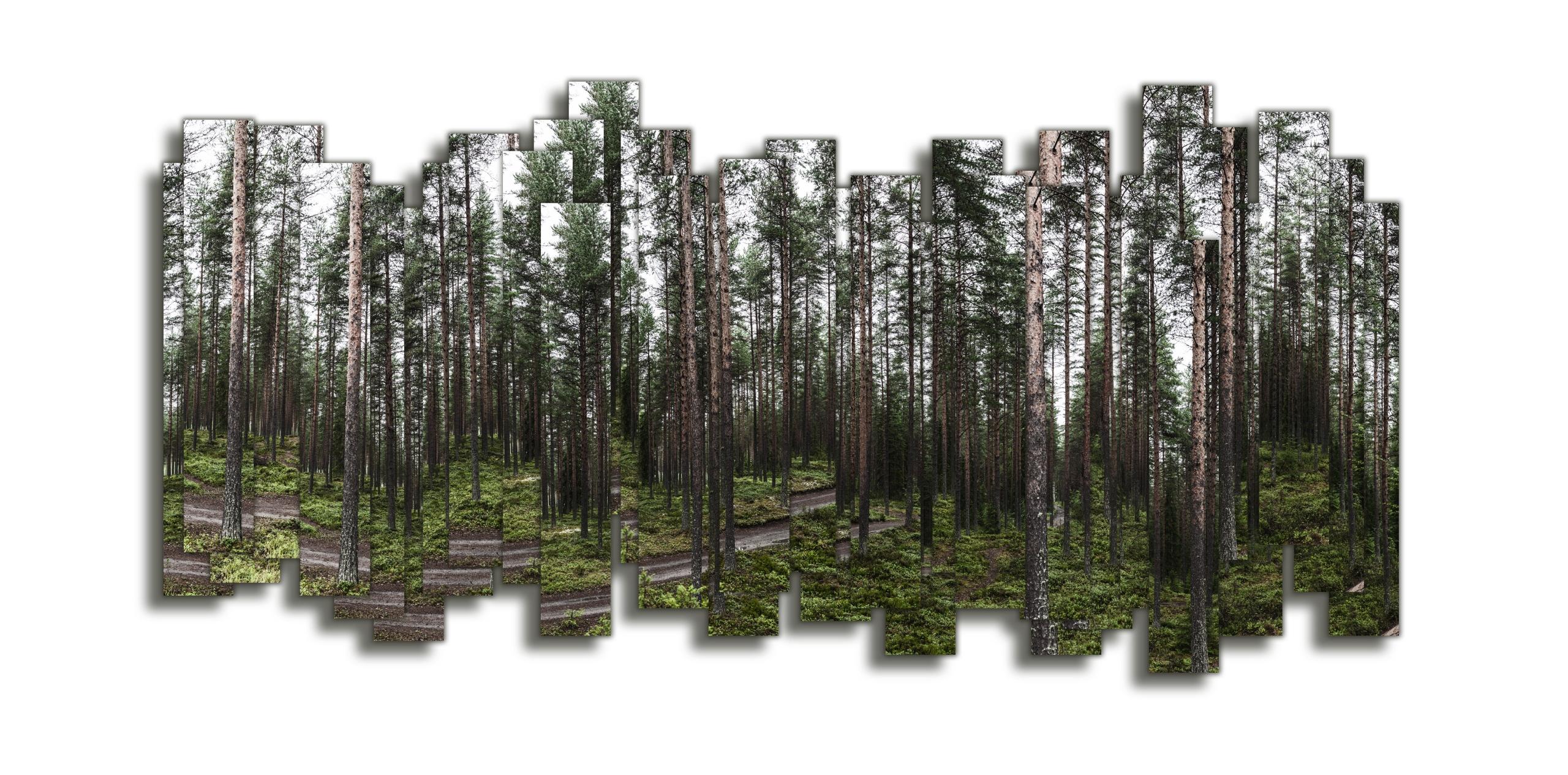 Sylvestre series images cut rec - philibert | ello