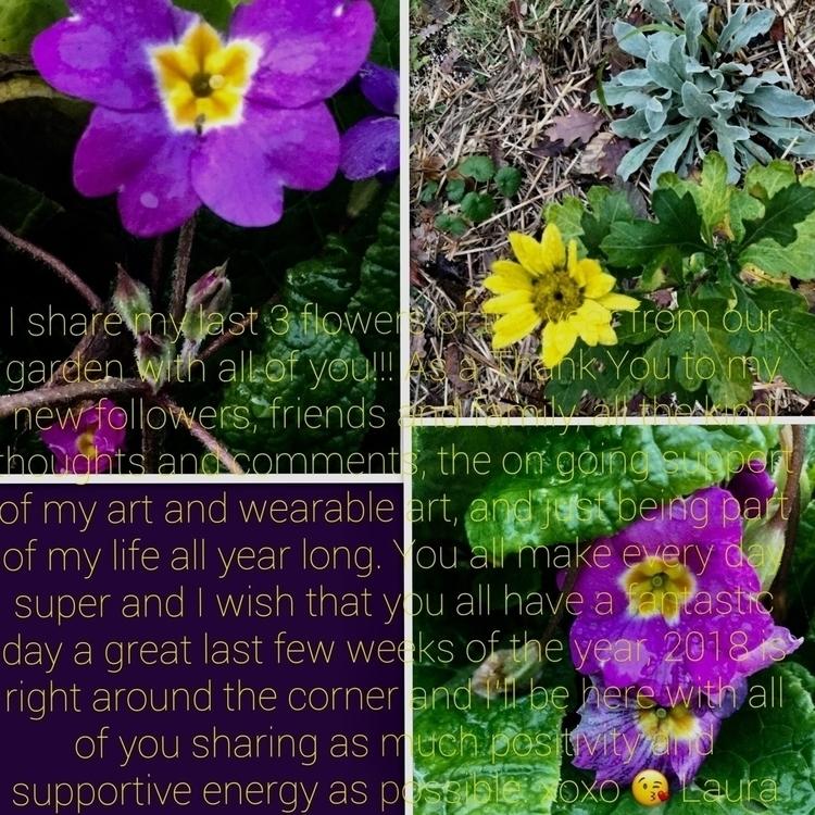 Feeling Grateful... share 3 flo - laurabalducci | ello