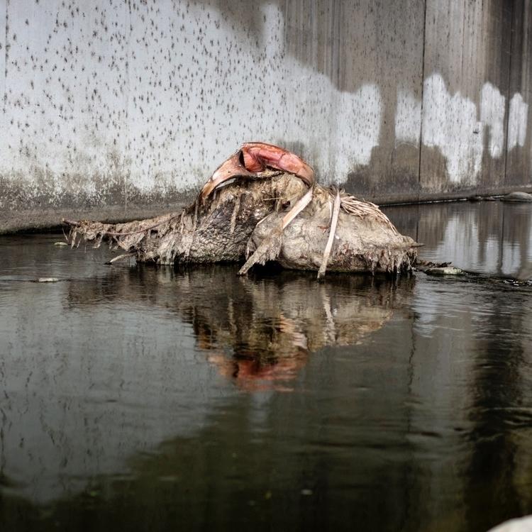 LA River - textureinspiration, water - talyo | ello