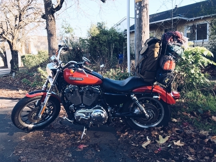 Packed essentials road - Harleydavidson - all-shall-fall | ello