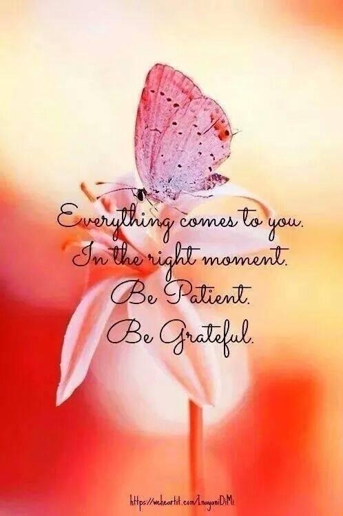 patient - thankful, grateful, blessed - paulgoade | ello