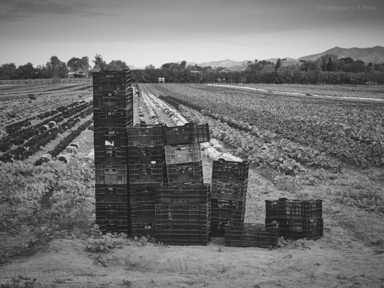 Stacked crates. WebSite - monochrome - tychobrown | ello