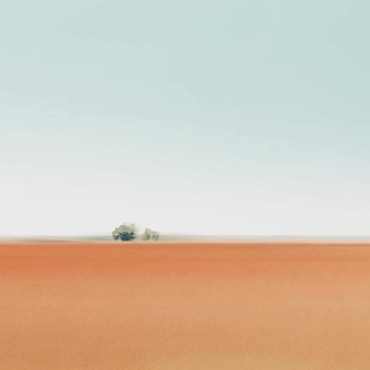 ploughed fields Free State - sh - lioneldp | ello