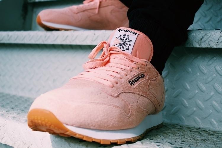 reebok, fashion, pink, classic - thechadmacc | ello