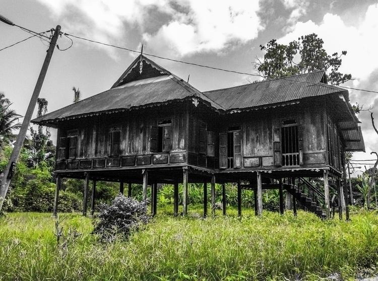 day farm - Kg Bota, Perak, Mala - farizal   ello