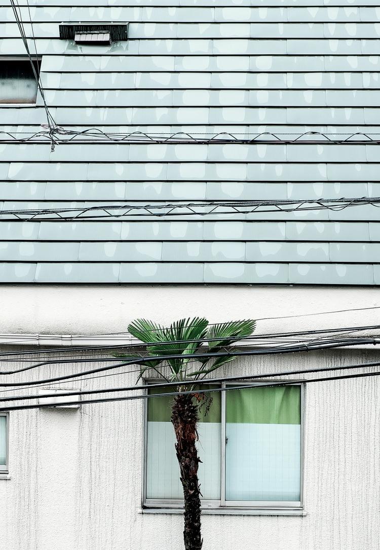 Tokyo shot Rohan Hutchinson. st - useformat | ello