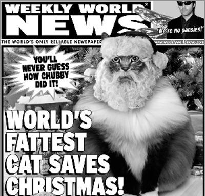 Christmas, Caturday - robogiggles   ello