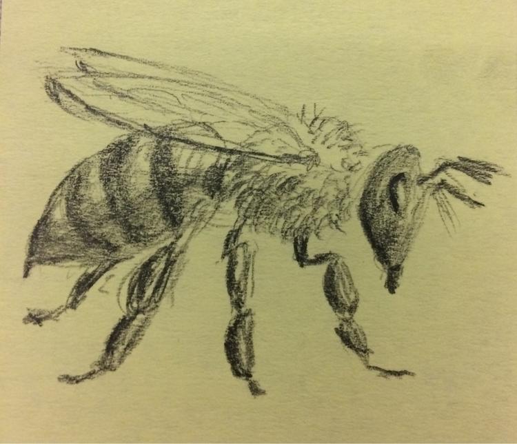 pencil, bee, postit - gsuarez   ello
