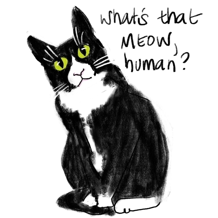 cat, sketch, art, illustration - reneeleigh | ello