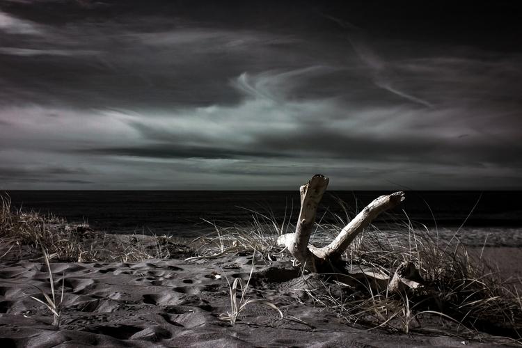 Winter beach central California - mlhannahfineart | ello