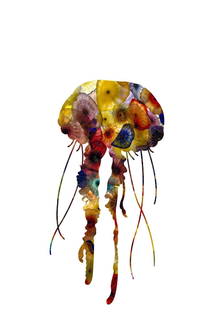 Jellyfish started messing photo - michaelcolgate   ello