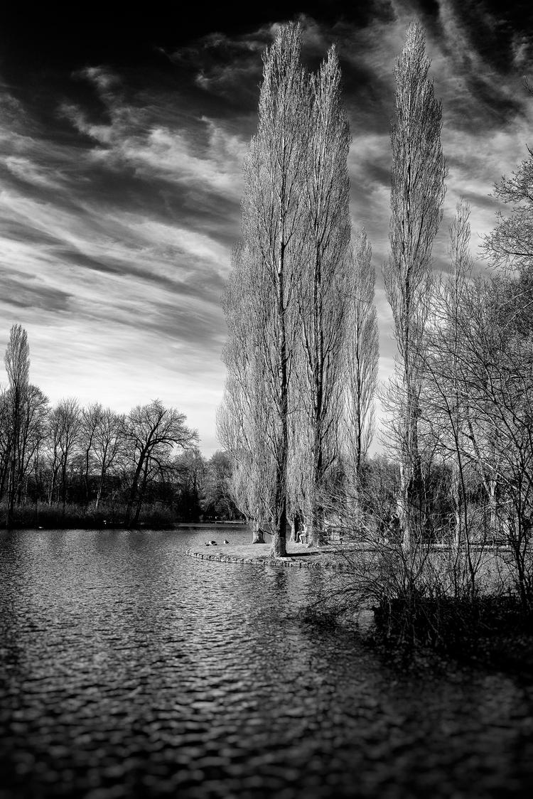 flaming trees - Munich, 2017-12-31 - christofkessemeier | ello