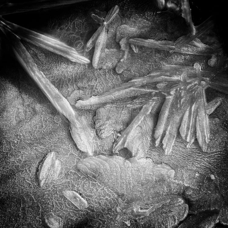 Small Details - 2, photography, blackandwhite - davidhawkinsweeks | ello
