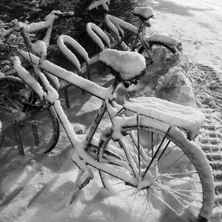 Snowbikes Oslo - snow, bikes, oslo - stigergutt | ello