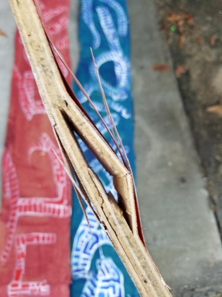 Pieces destruction - art, painting - awkward_glances | ello