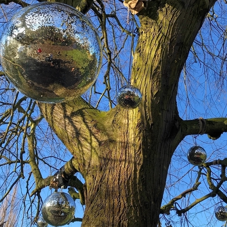 DiscoTree, Nature, PartyInThePark - mamajules77 | ello
