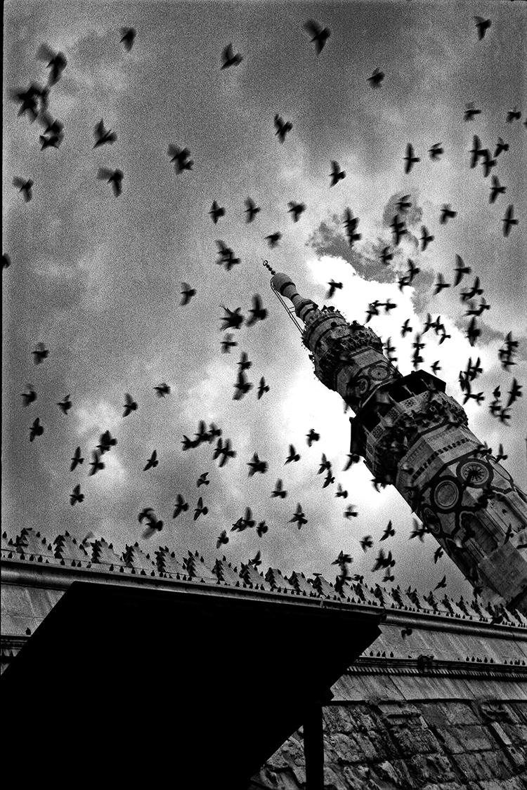 Storm, Damascus, Syria. Photogr - tajiko | ello