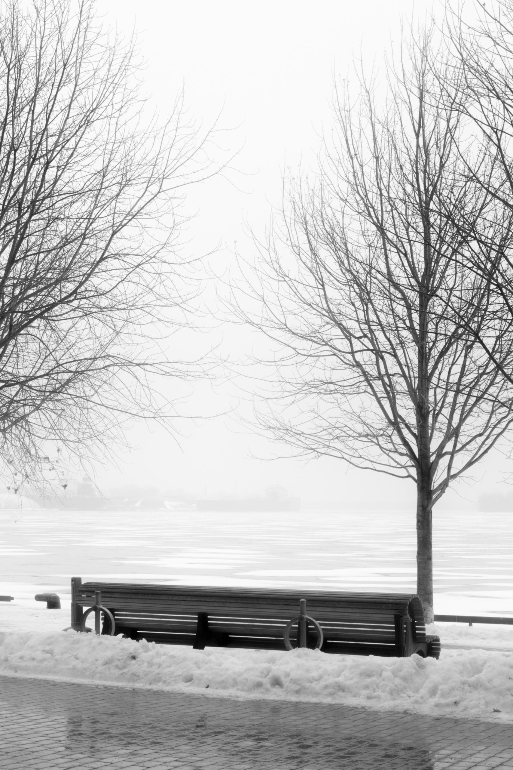 photography, blackandwhite - kevinercia | ello