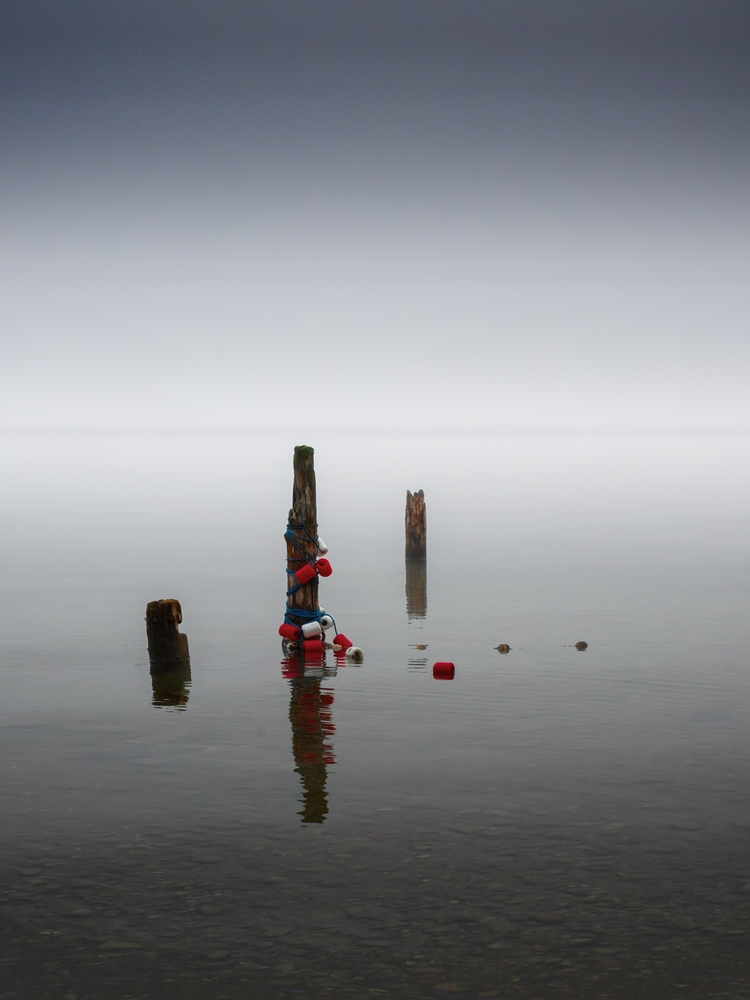 Pole position. Misty day lake  - 8moments | ello