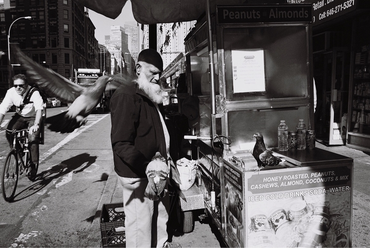 Pigeon Whisperer. NYC. November - triflesntreasuresphoto | ello