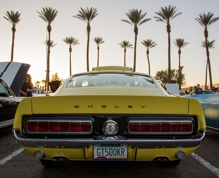 1968 GT500KR - ford, mustang, classic - alexvese   ello