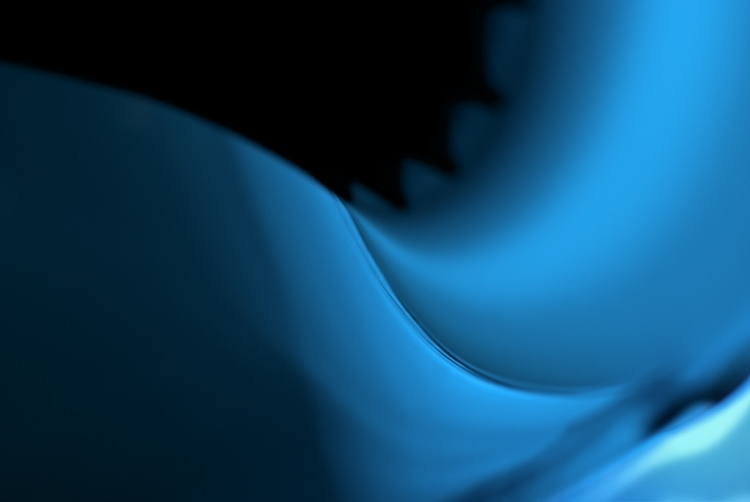 Blue Mood - photography, graphic - toitagl | ello