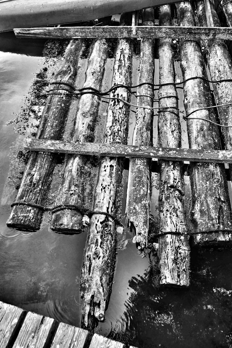 Logs water - blackandwhitephotography - borisholtz | ello