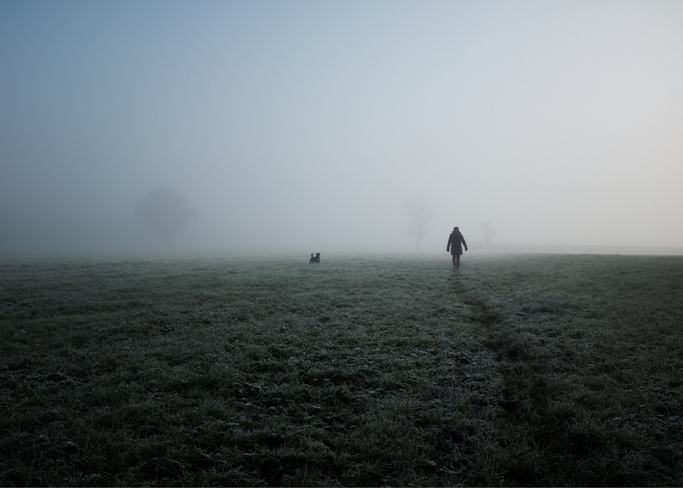 simple image, dog walk lad, Osc - mikebeecham | ello