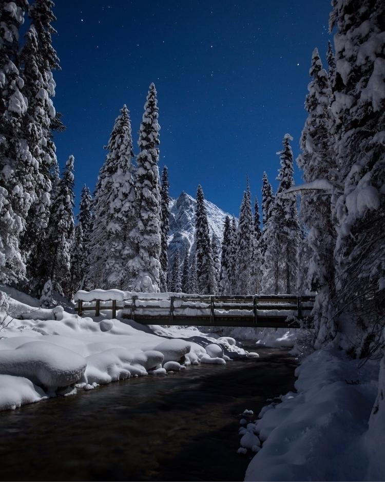 Silent Night Clear skies, full  - shane_turgeon | ello