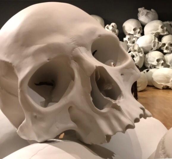ngvtriennial, skulls, skulptures - s2art | ello