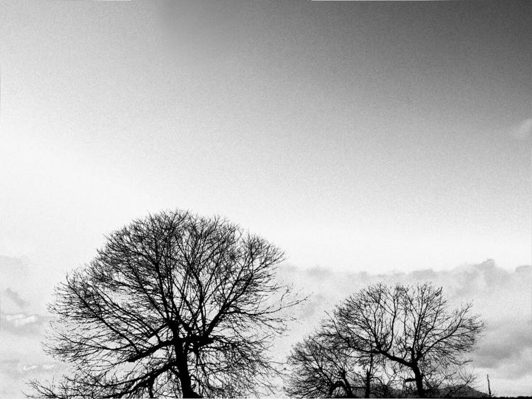 Black white serie-1 - bw, dark, bwphotography - lineaoscura | ello
