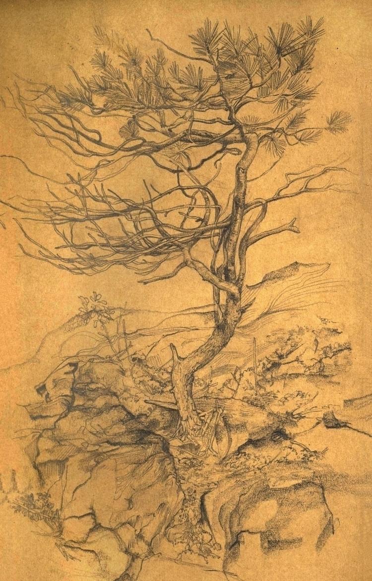 Pine Graphite paper, 4.5x8.5″,  - jameschleeart   ello