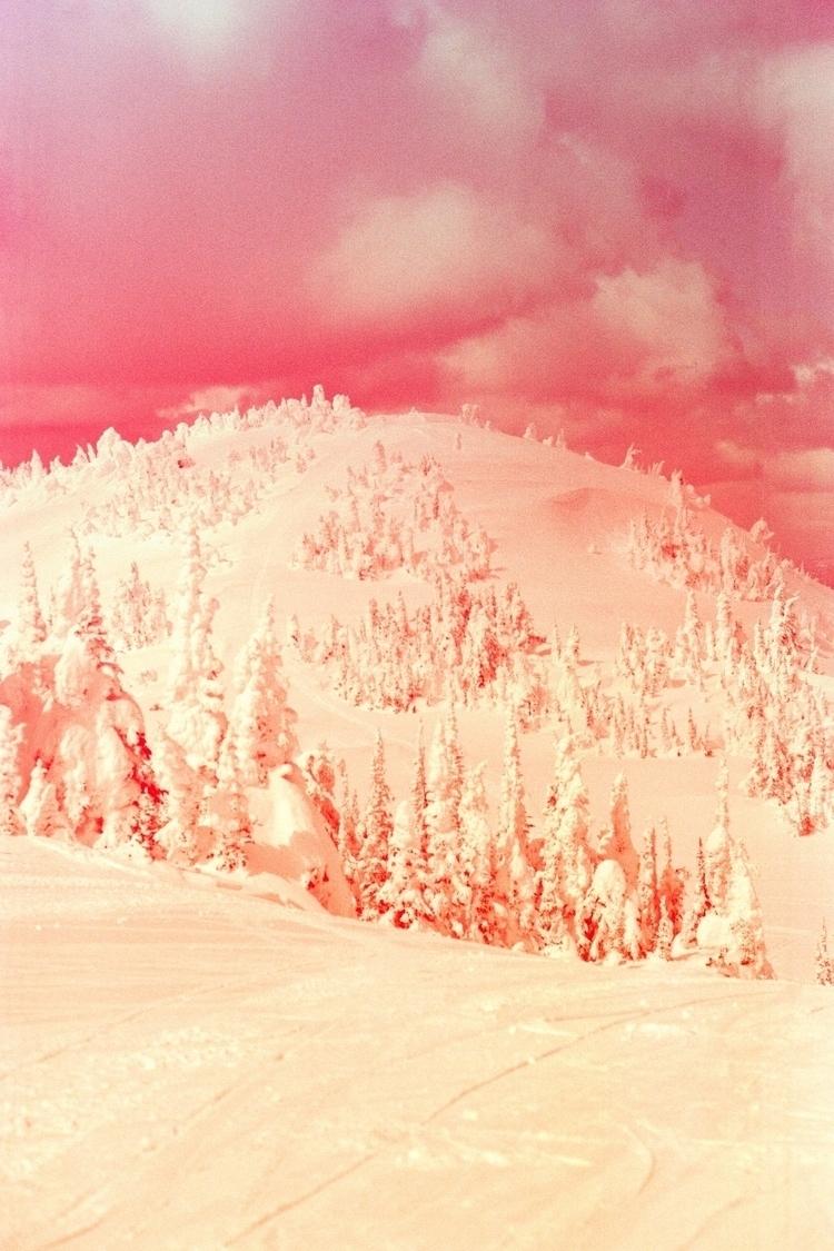 Blush - photography, revolog, snow - justinetrickett | ello