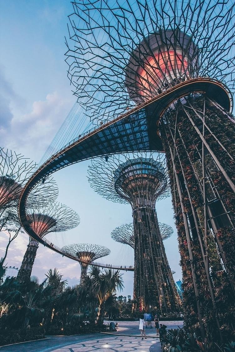 Gardens Bay Singapore - photography - nuic | ello