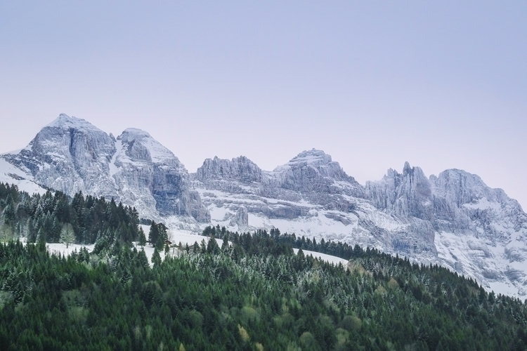 Swiss alps. beauty wild. Dents  - nordmannphoto | ello